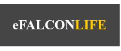 eFalcon Life Insurance