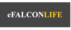 eFalcon Life provides whole life insurance quotes online for free